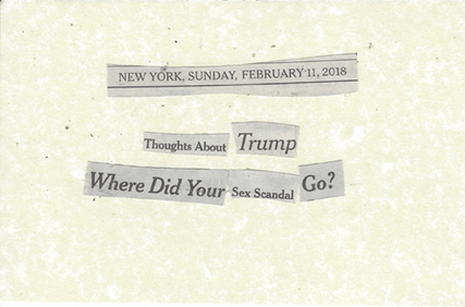 February 11, 2018 Thoughts about Trump where did Your Sex Scandal Go SMFL.jpg