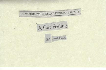 February 21, 2018 A Gut Feeling - Ban Florida SMFL.jpg
