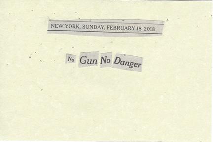 February 18, 2018 No Gun No Danger SMFL.jpg