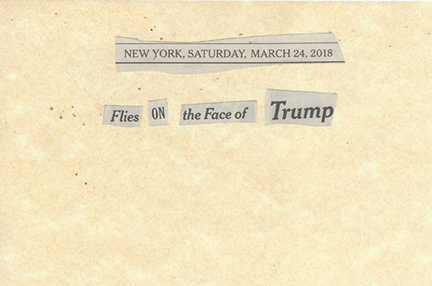 March 24, 2018 Flies on the Face of Trump SMFL.jpg