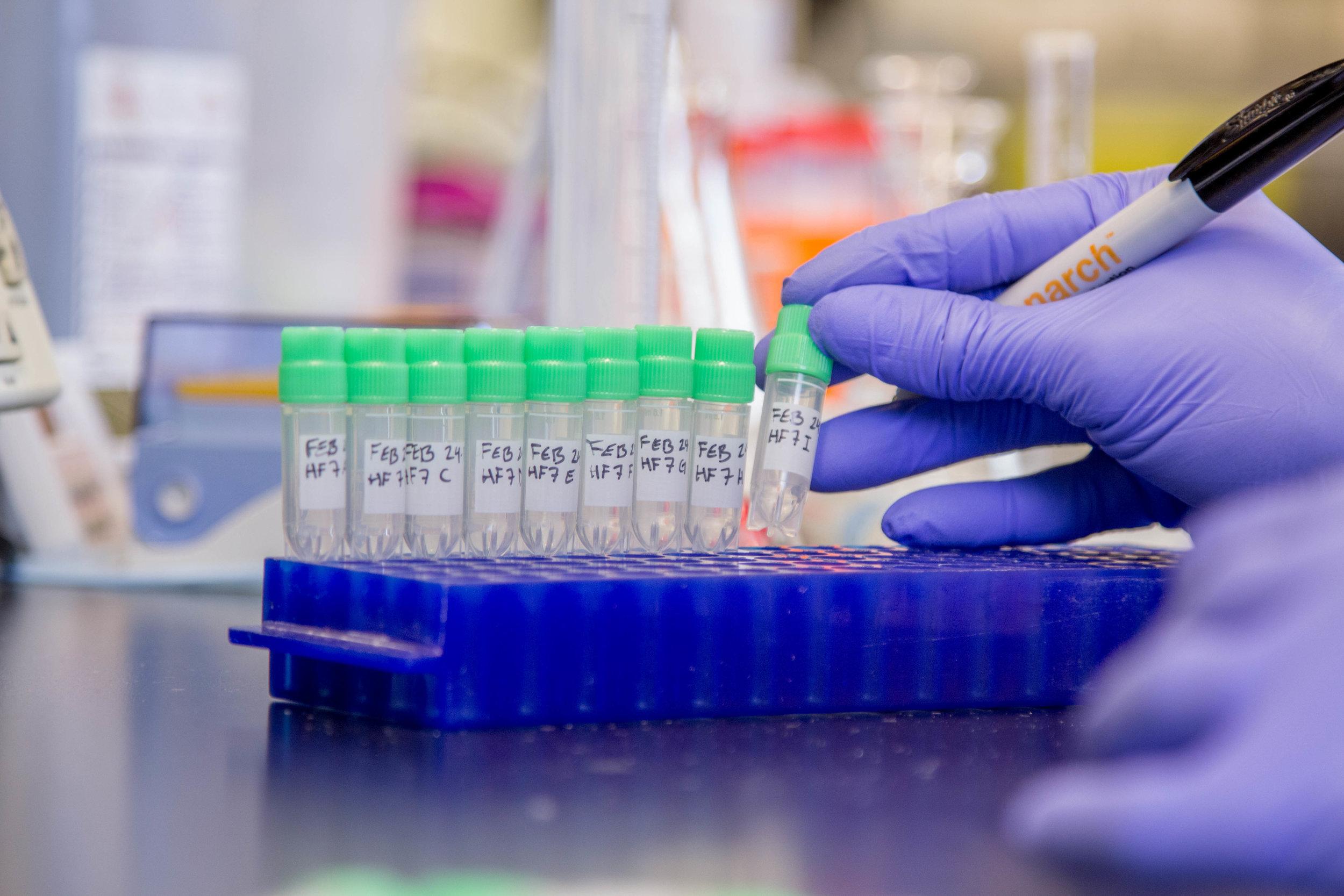 Test Tubes Labels.jpg