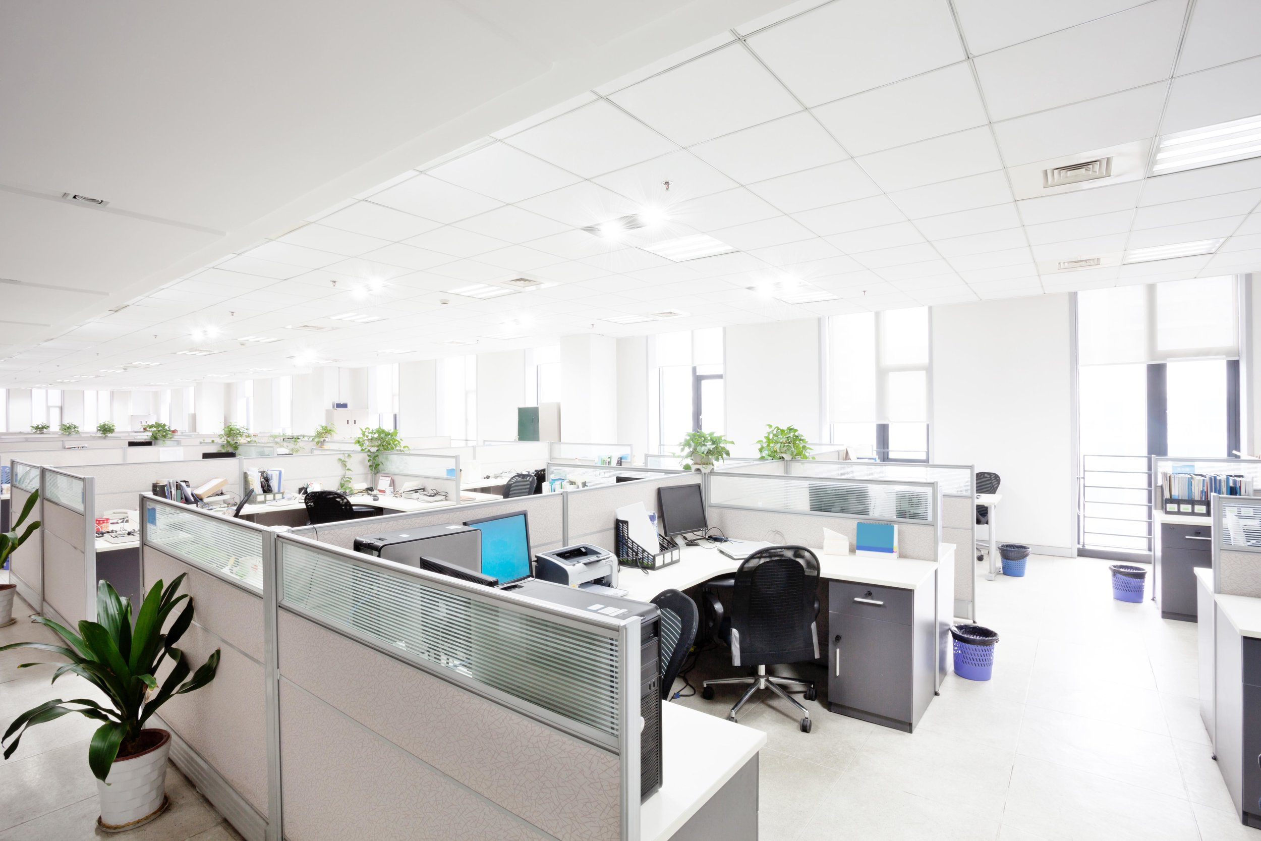 Office with Units & Bursts.jpg