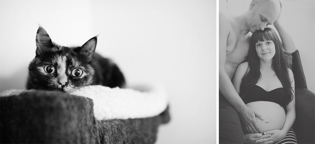 cat nursery maternitiy.jpg
