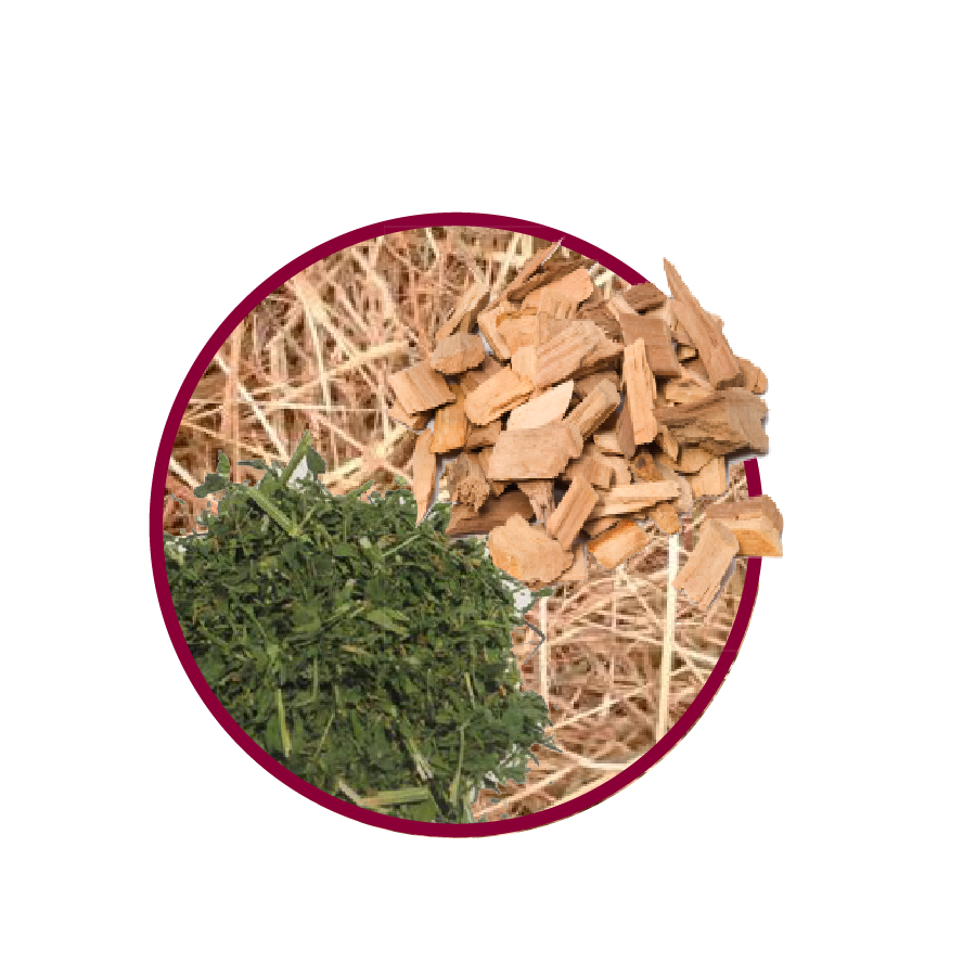 Chips Alfalfa Circle-01.png