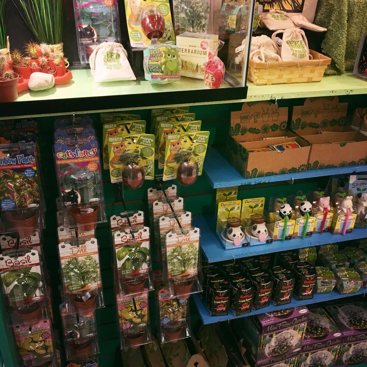 grow section.JPG
