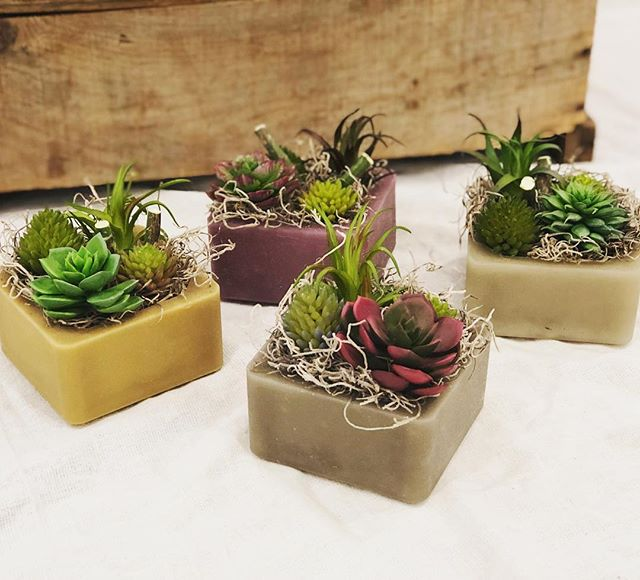 Get the look of succulents and the fragrance of a candle 100% worry & maintenance free with the lovely Wax Pottery GEO line from @habershamcandleco  #succulents #fauxsucculents #flamelessfragrance #homedecor #facesmainstreet