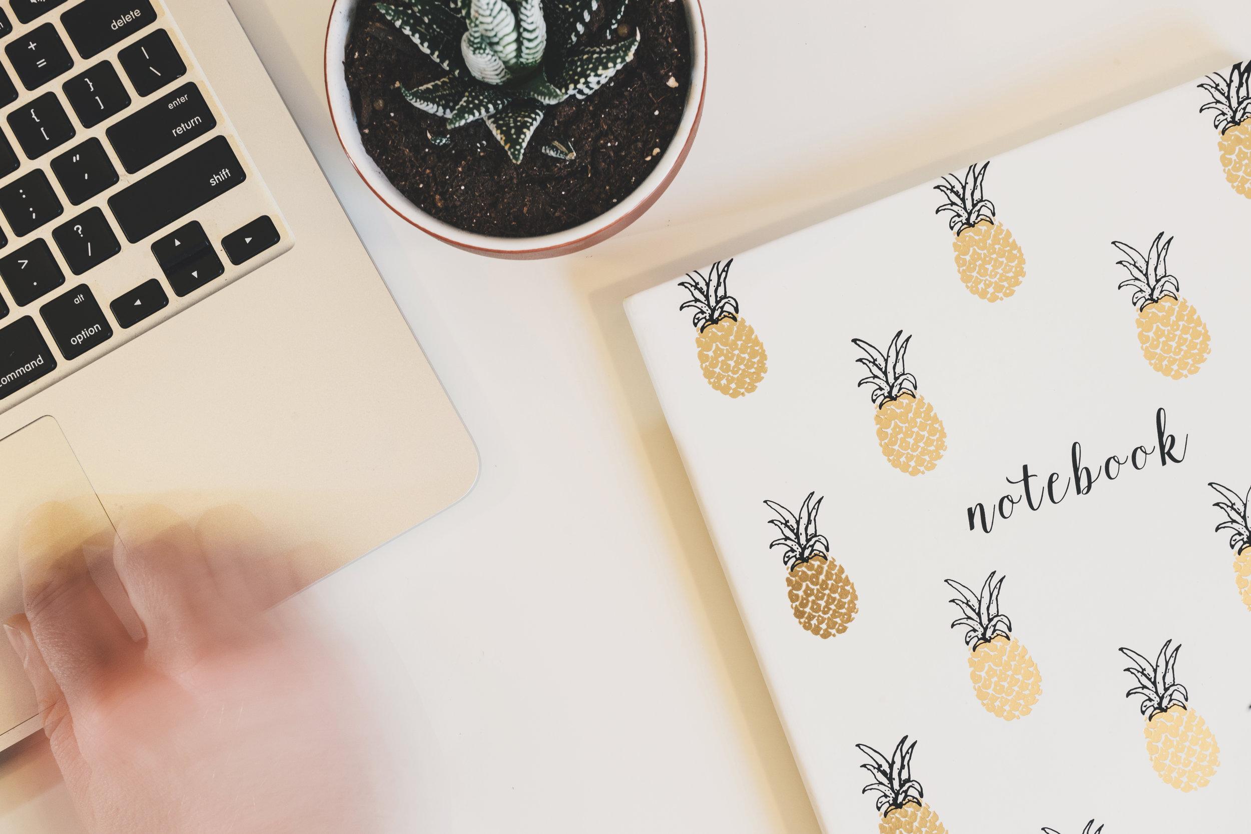 pineapple-supply-co-82911.jpg
