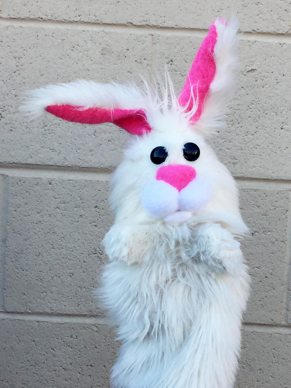 Bunny white.jpg