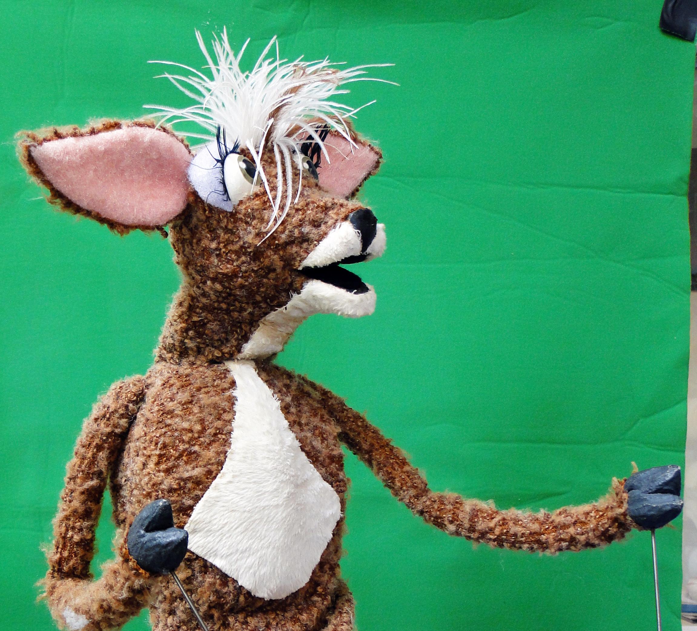 mousedeer.jpg