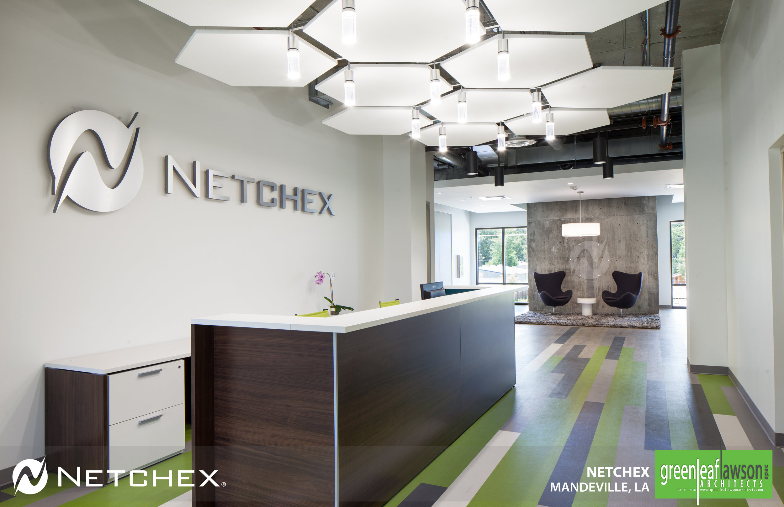 Netchex_1.jpg
