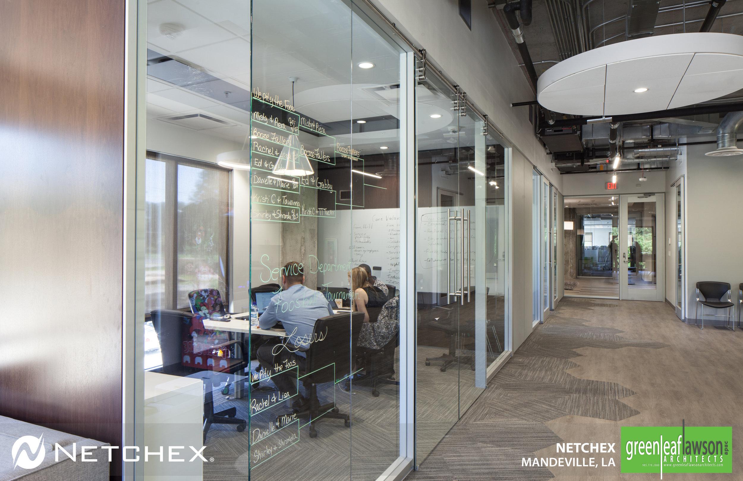 Netchex_2.jpg