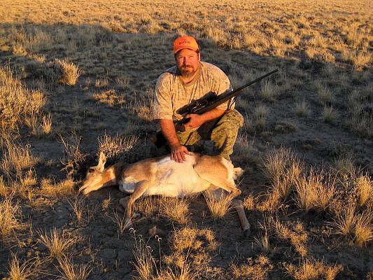 2011_wy_ant_deer.jpg