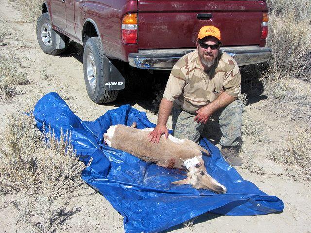 2012_antelope.jpg