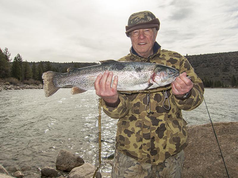 2014_trout.jpg