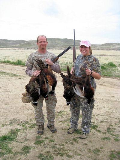 2010_pheasant7.jpg