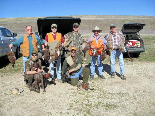2011_pheasant5.jpg