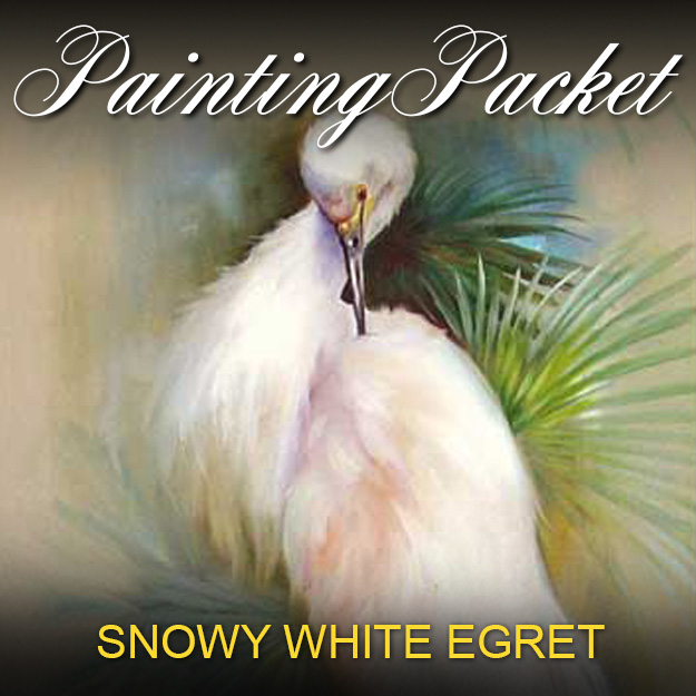 Snowy White Egret Painting Pack Gary Kathwren Jenkins Painting With Passion