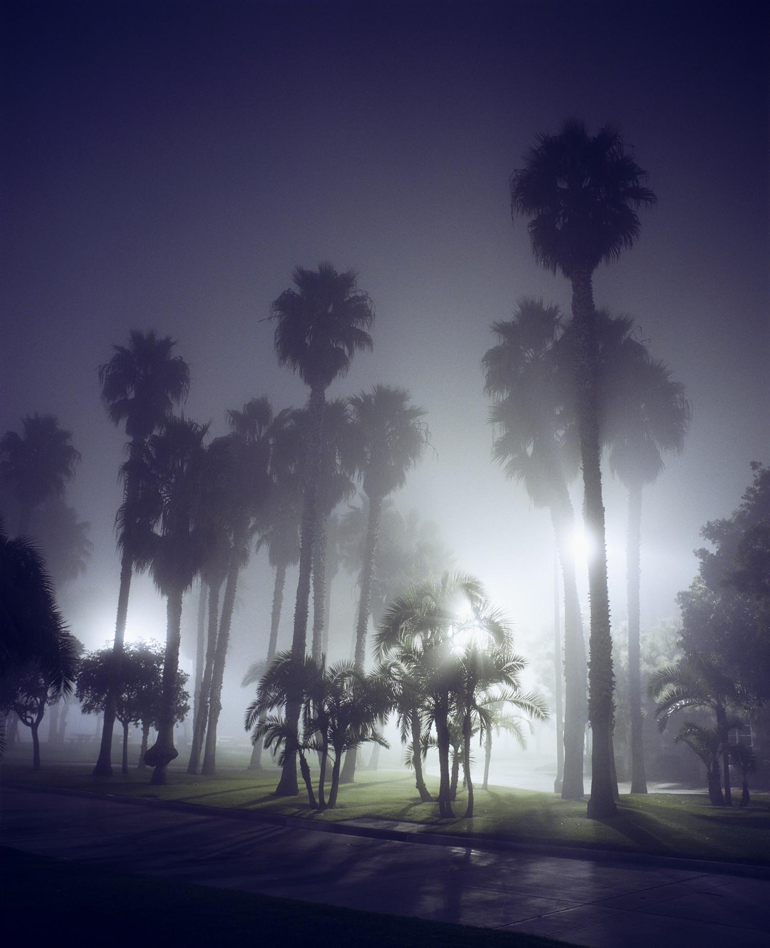 Santa Monica #8