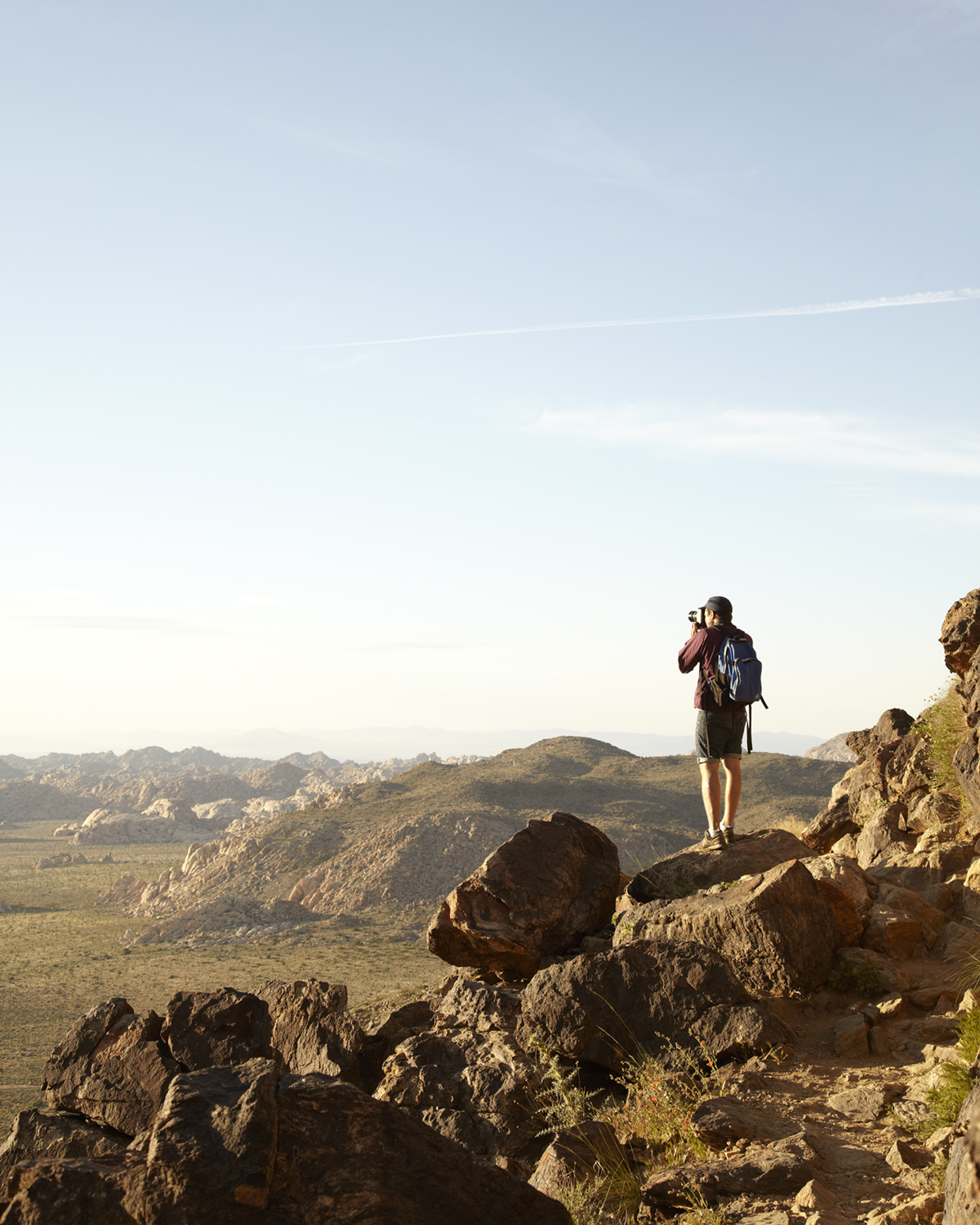 Ryan Mountain, Joshua Tree