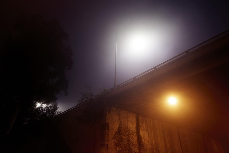 Fog_Elysian_0090.jpg