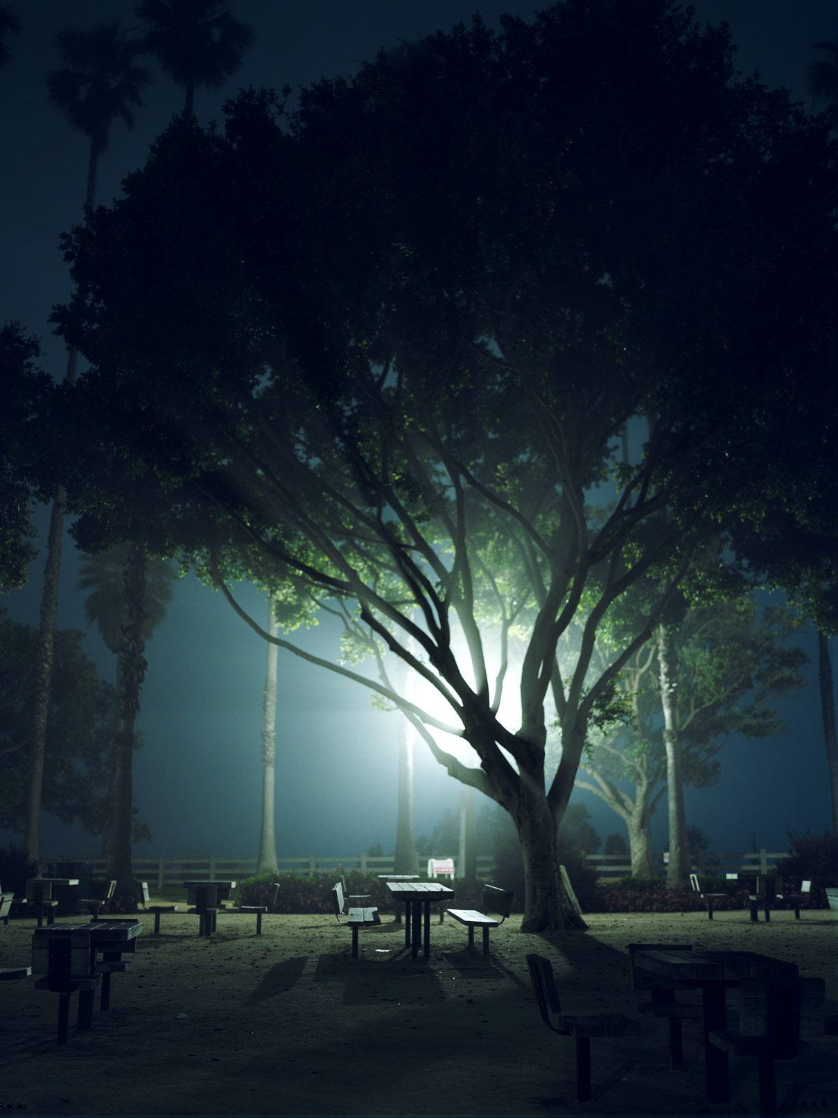 park.benches.santa.monica.r.1.etsy.jpg