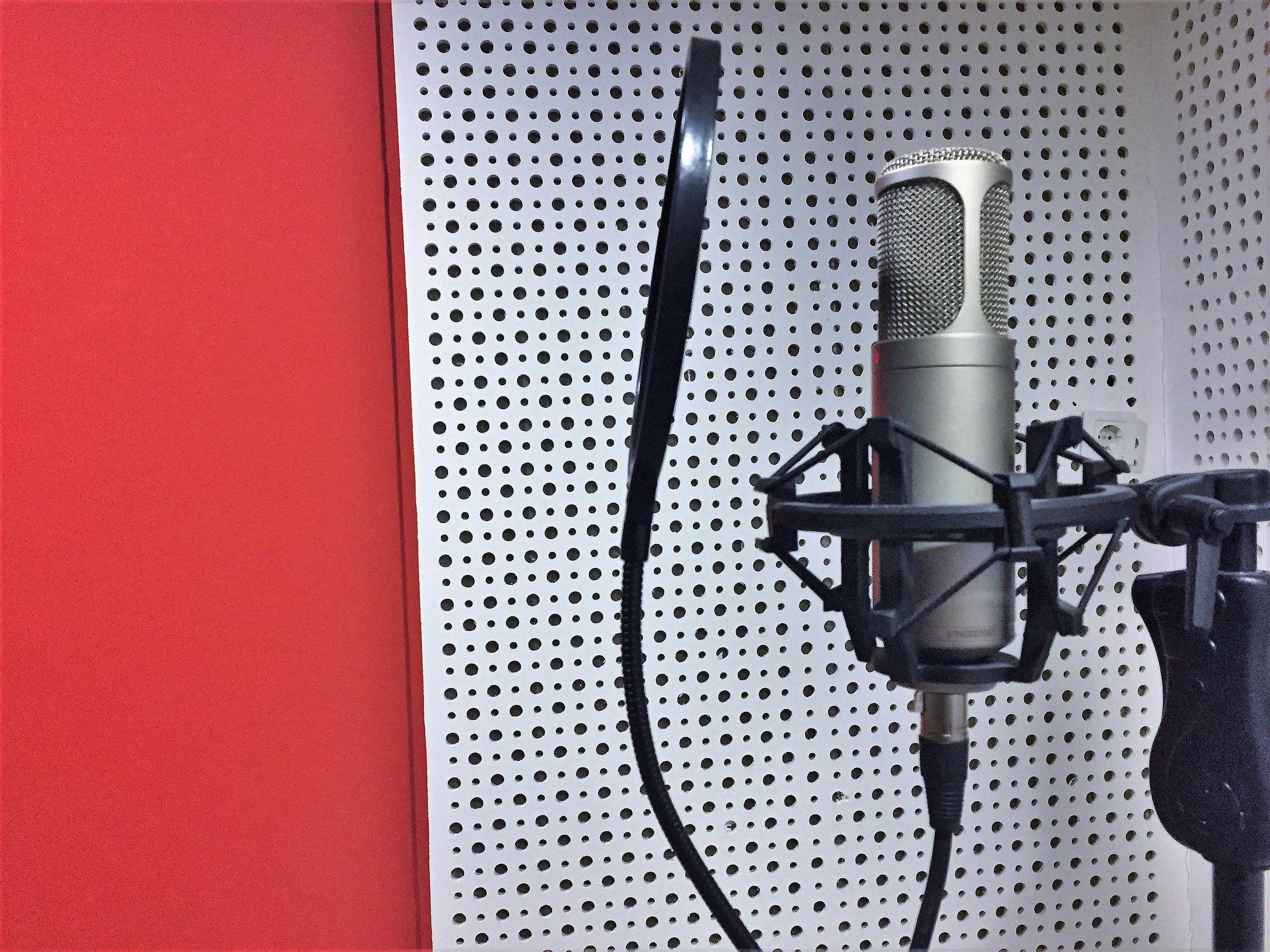 red_mic.jpeg
