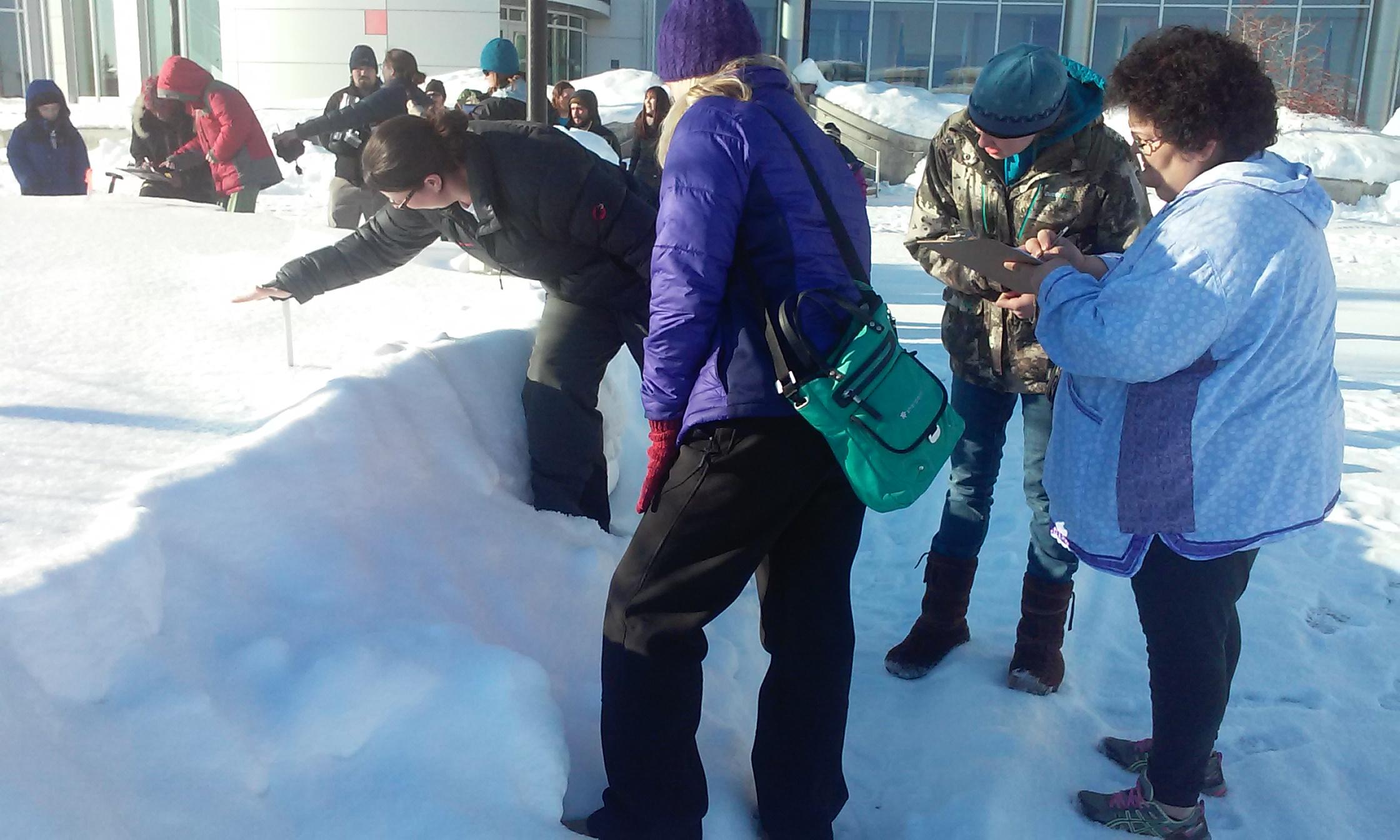 Measuring total snowfall
