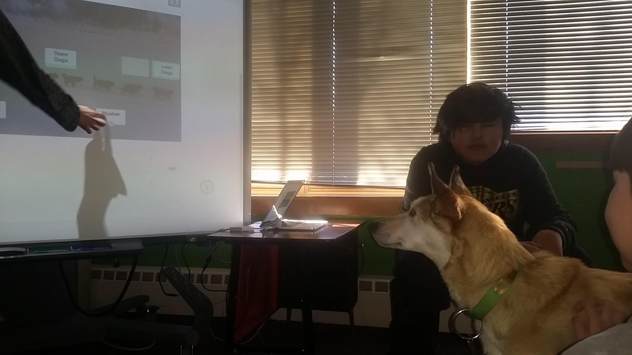 In-School Dog Mushing Class
