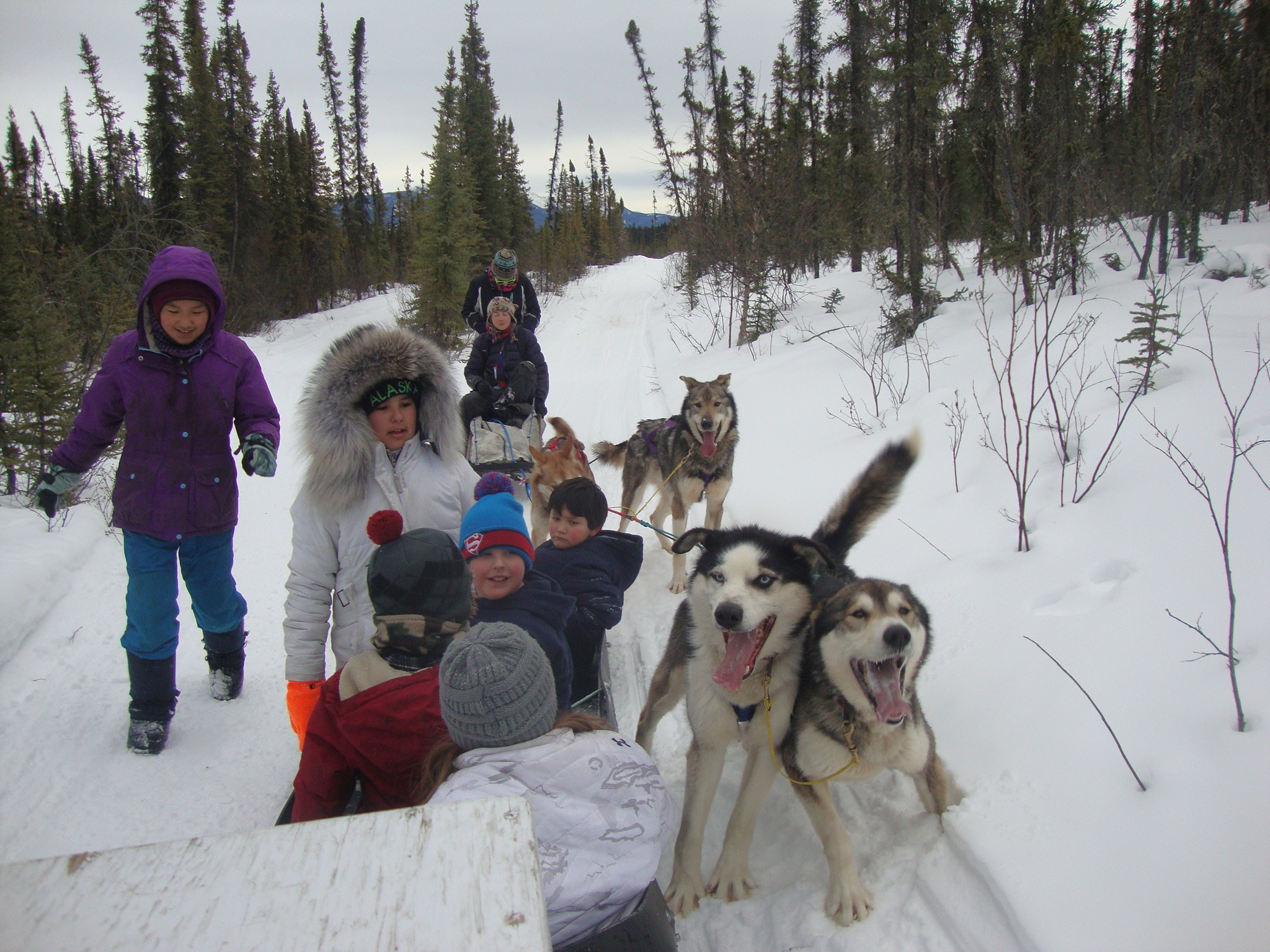 Eagle School students and Cranberry Kennel dogs take a rest during a run.