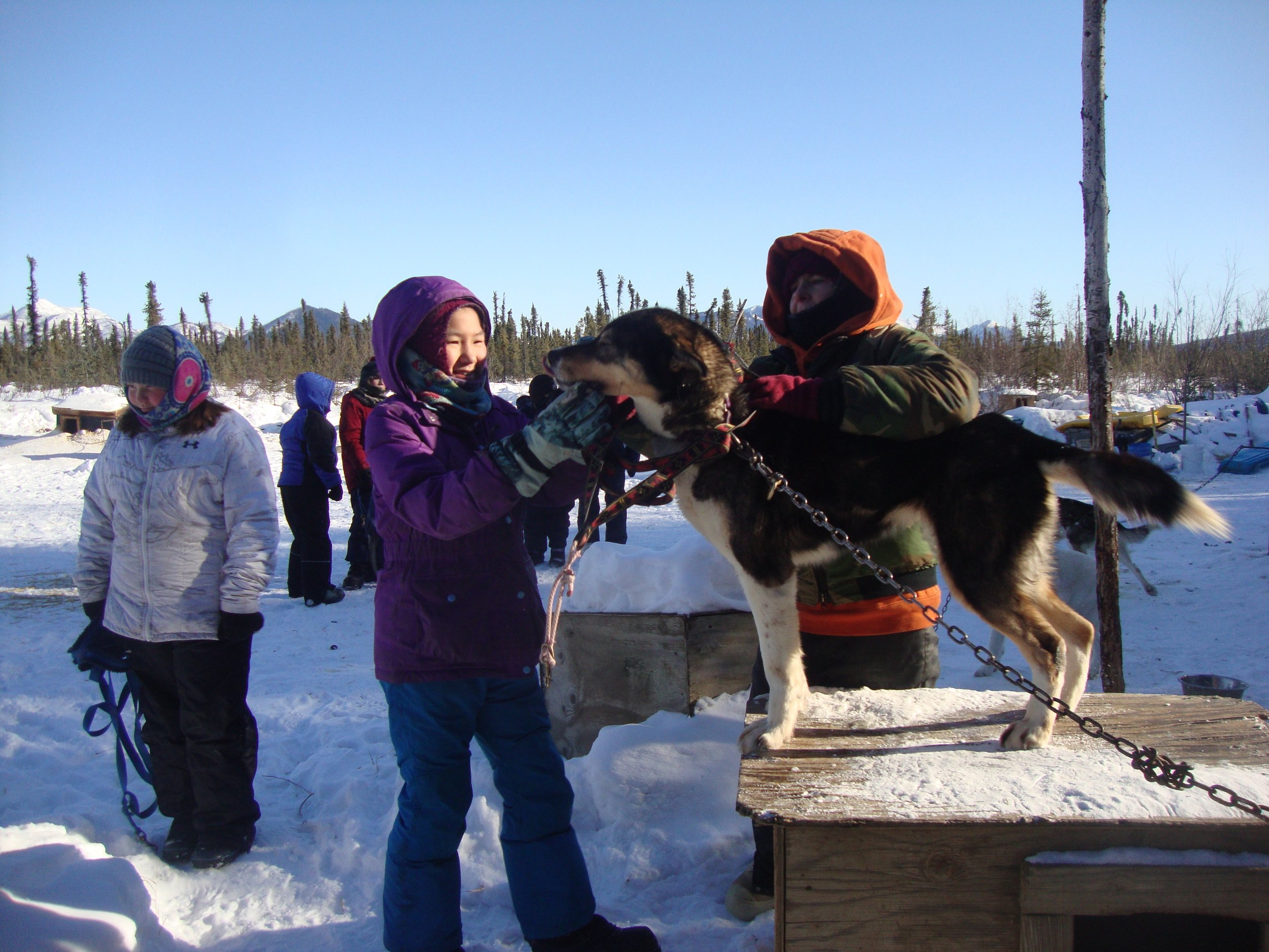 Eagle School students enjoy petting and handling the dogs at Kia Kennel.