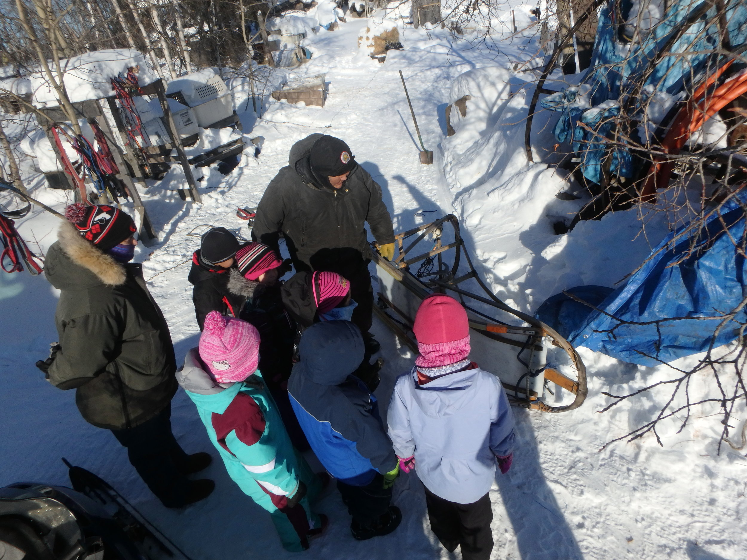 Musher Lloyd Charlie teaches Minto School students about the sled.