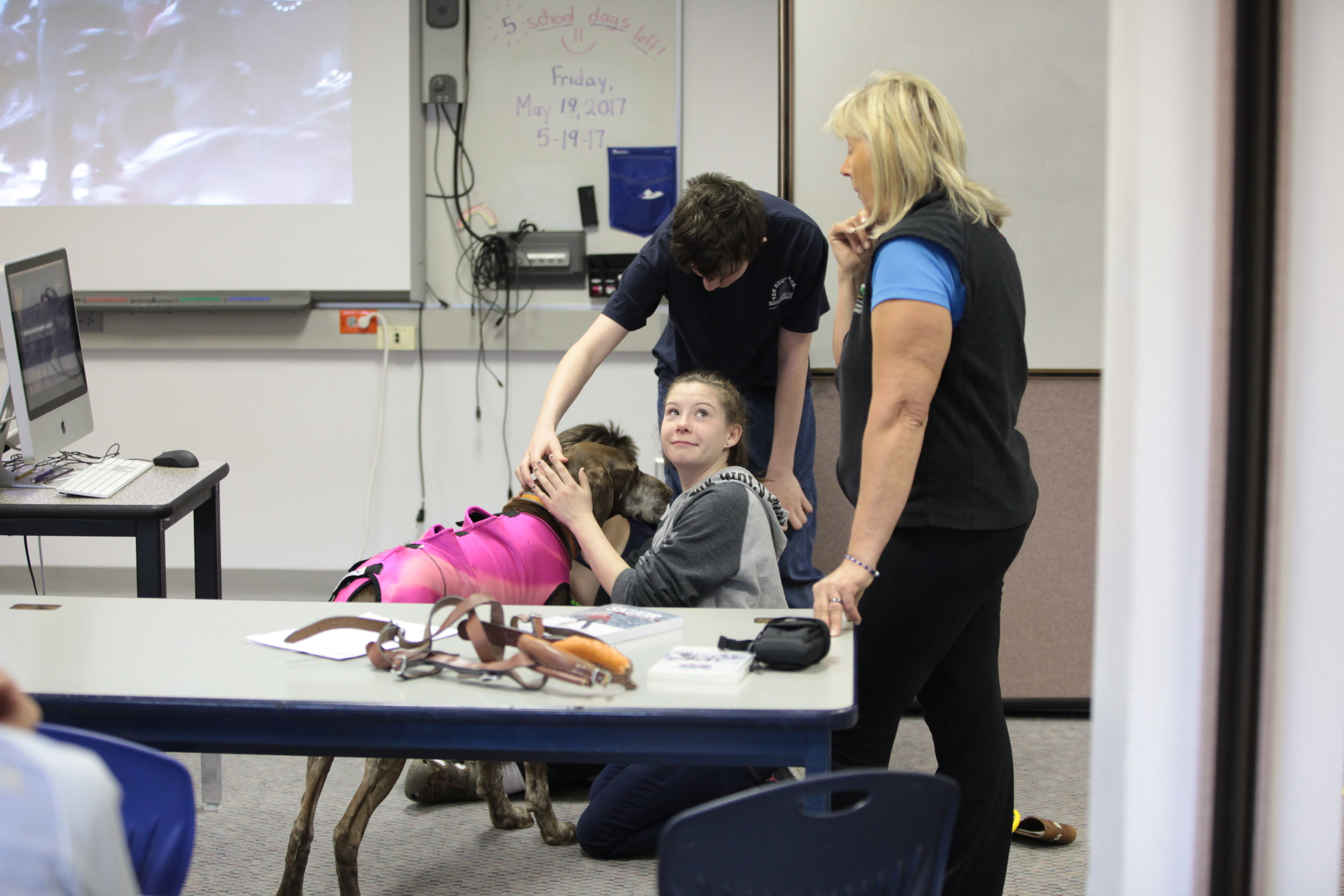 Guest speaker at Tok School teaching students about dog handling.