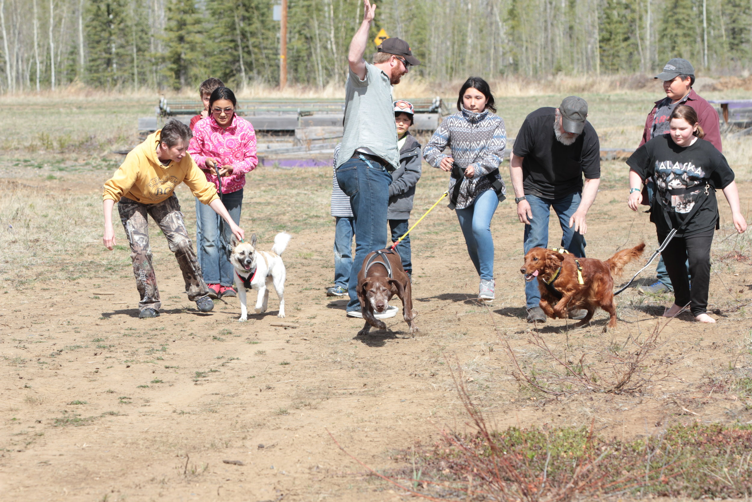 Eagle & Tanacross students learn to run with dogs.