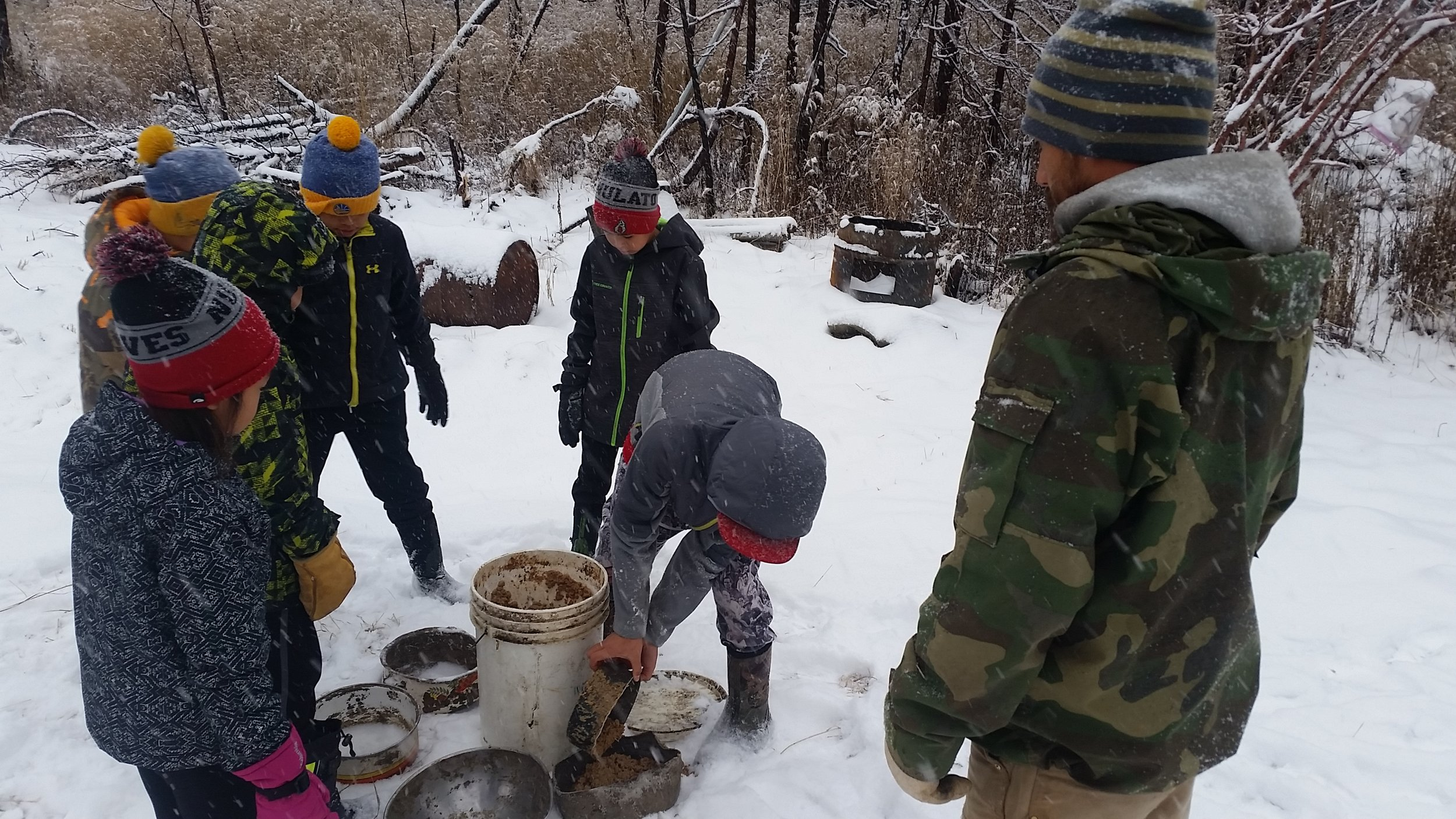 Students take turns scooping dog food.