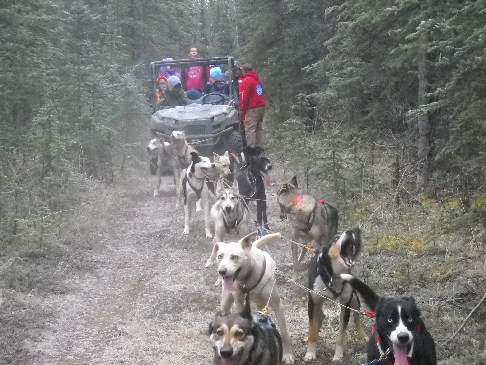 Rob Fabian with students running dogs by ATV.