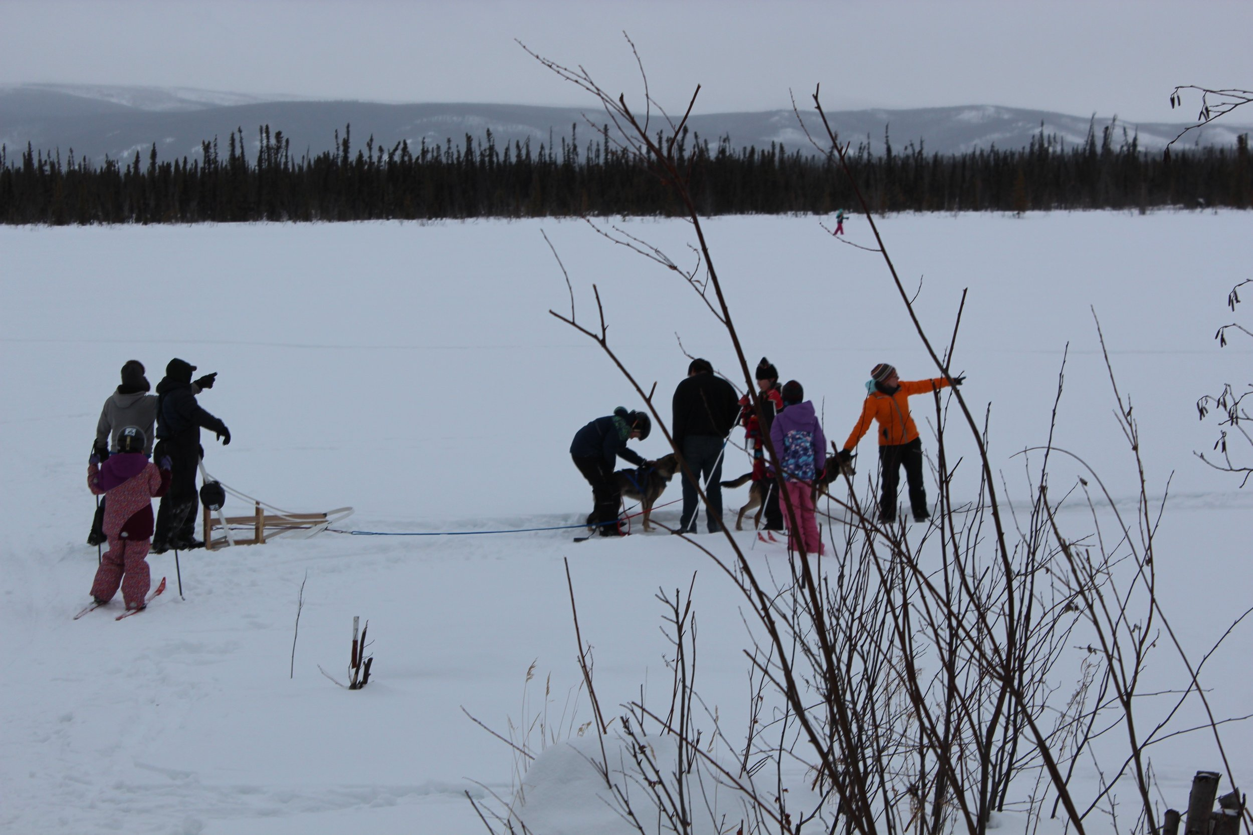 Group on lake with dogs.