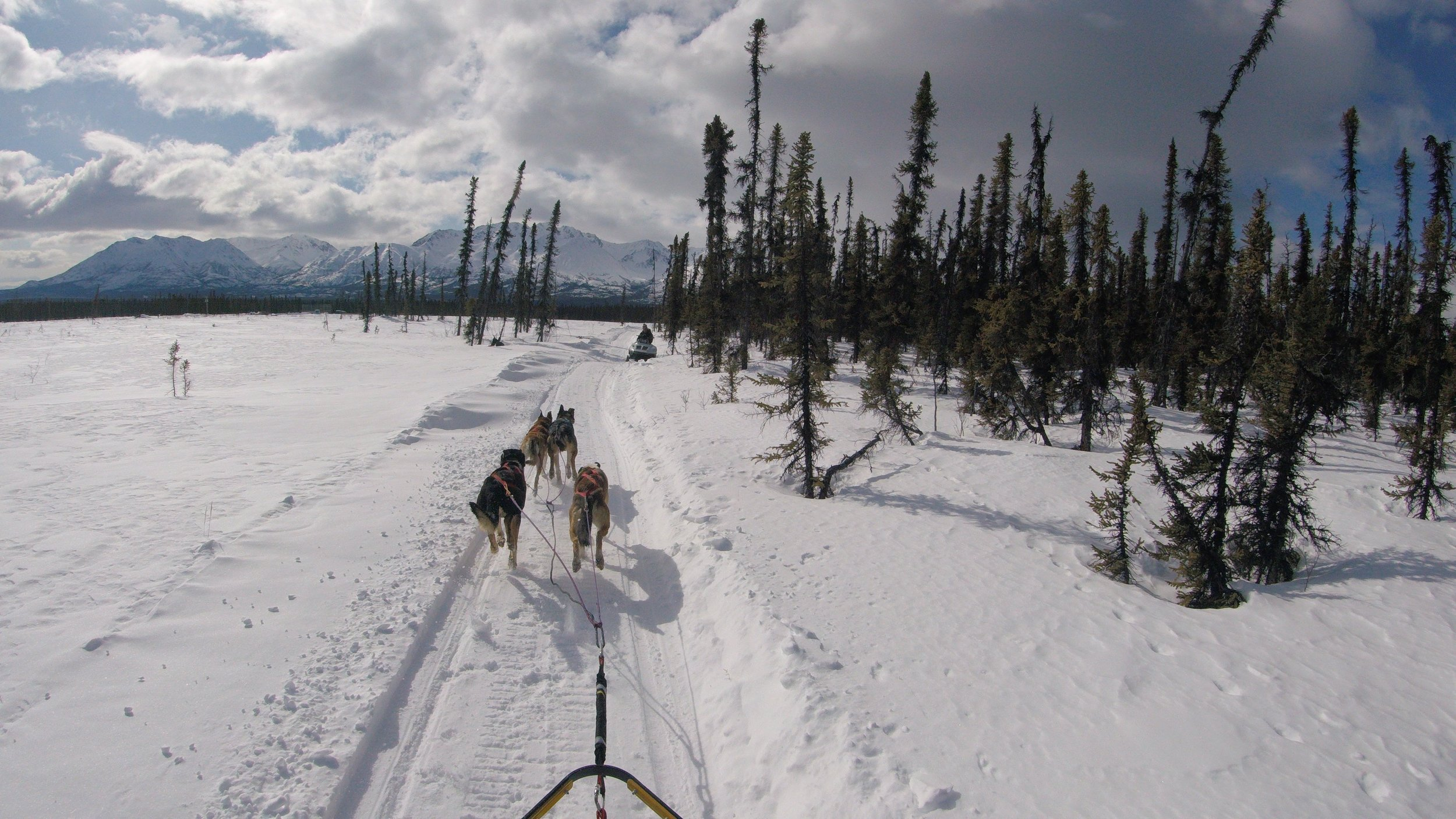 Trail Support 1.jpg