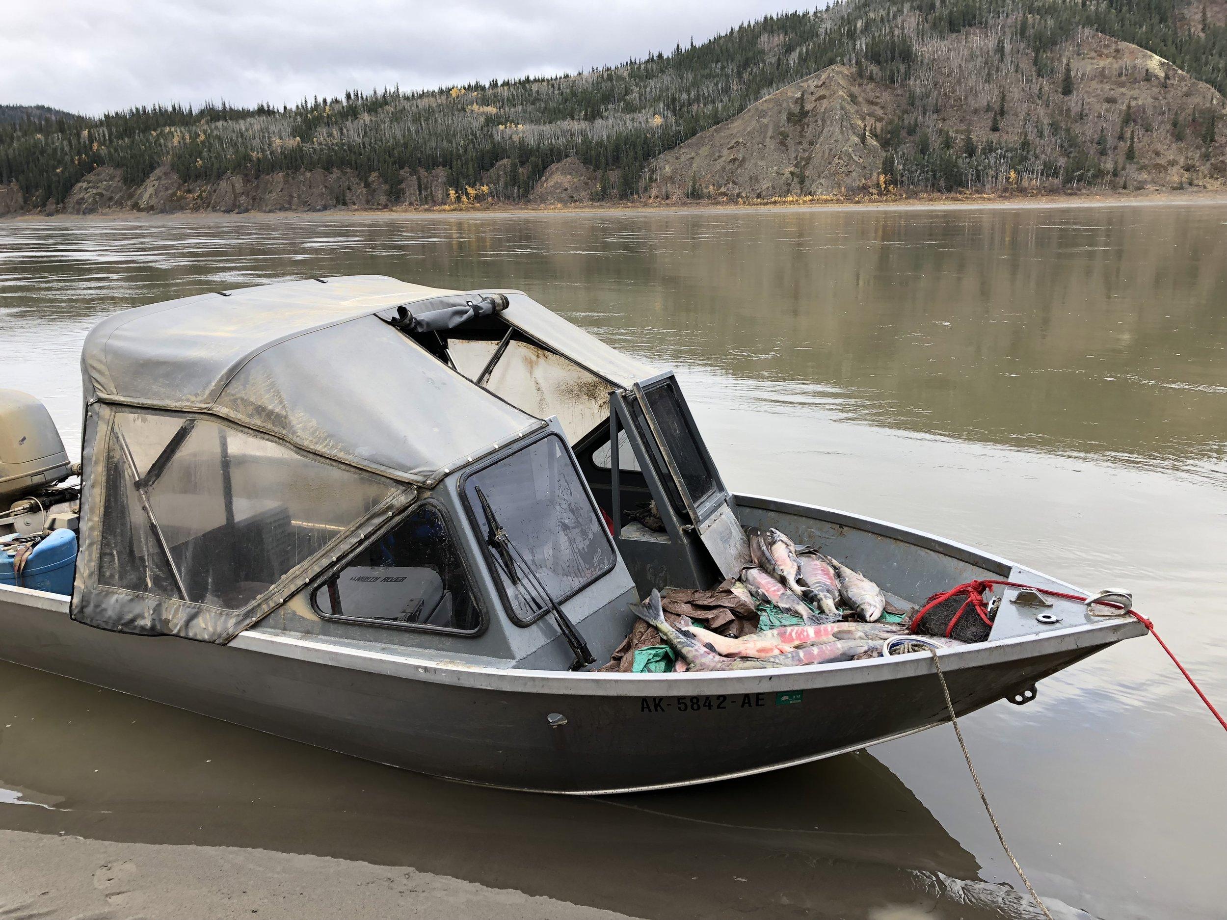 Scott_s Boat with fish.jpg