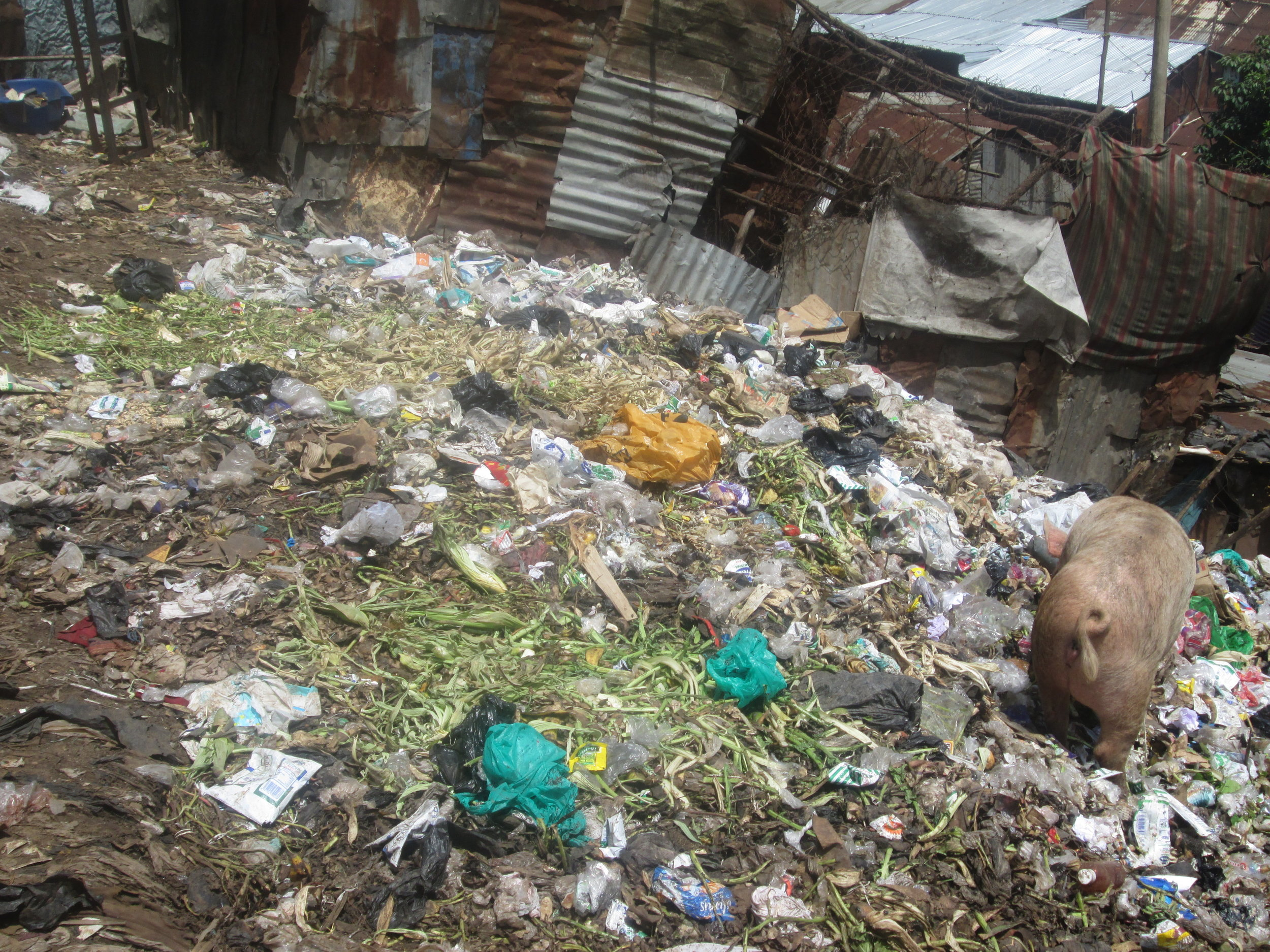 Poor garbage disposal