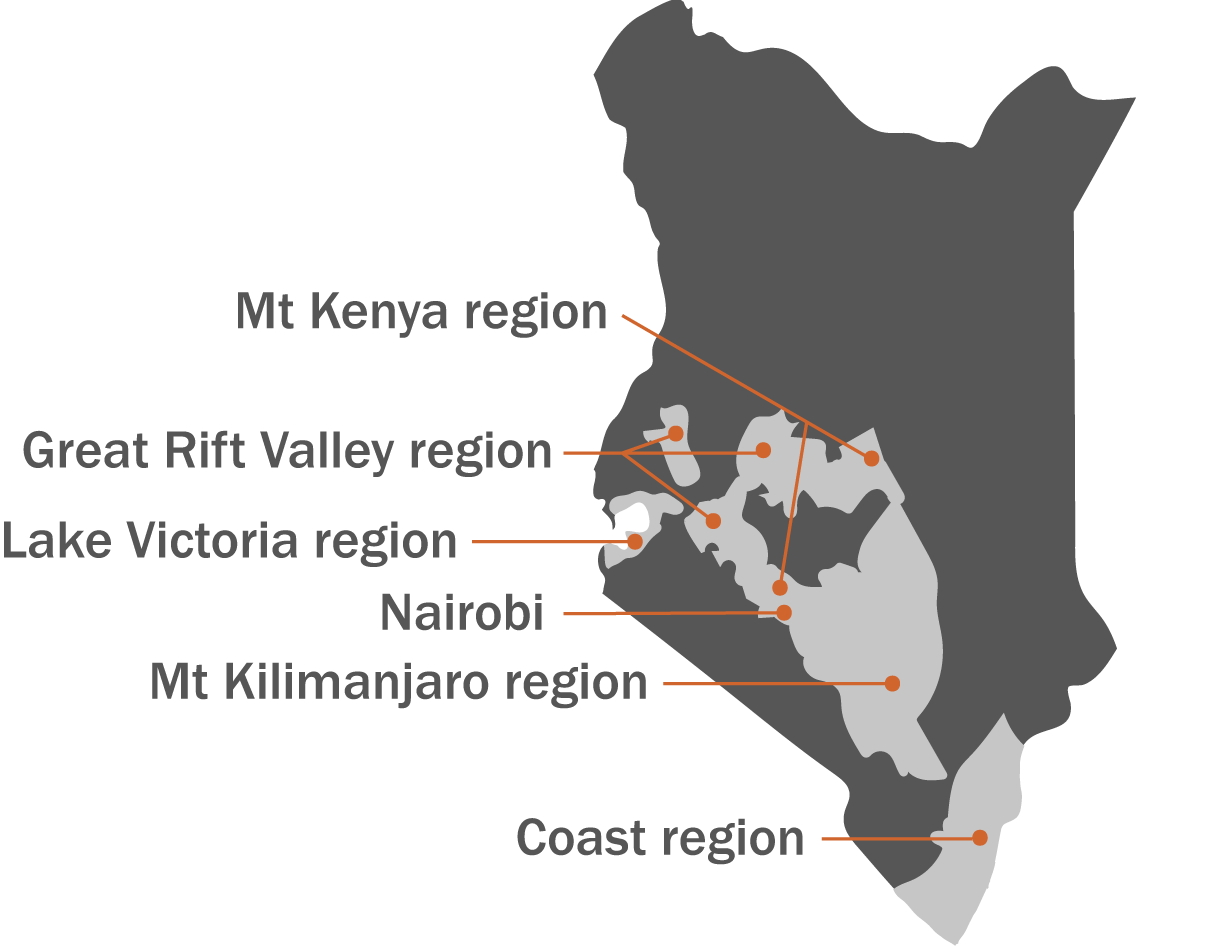 AMT operates through about thirty regional Muungano networks that are active in fourteen Kenyan counties, across six regions