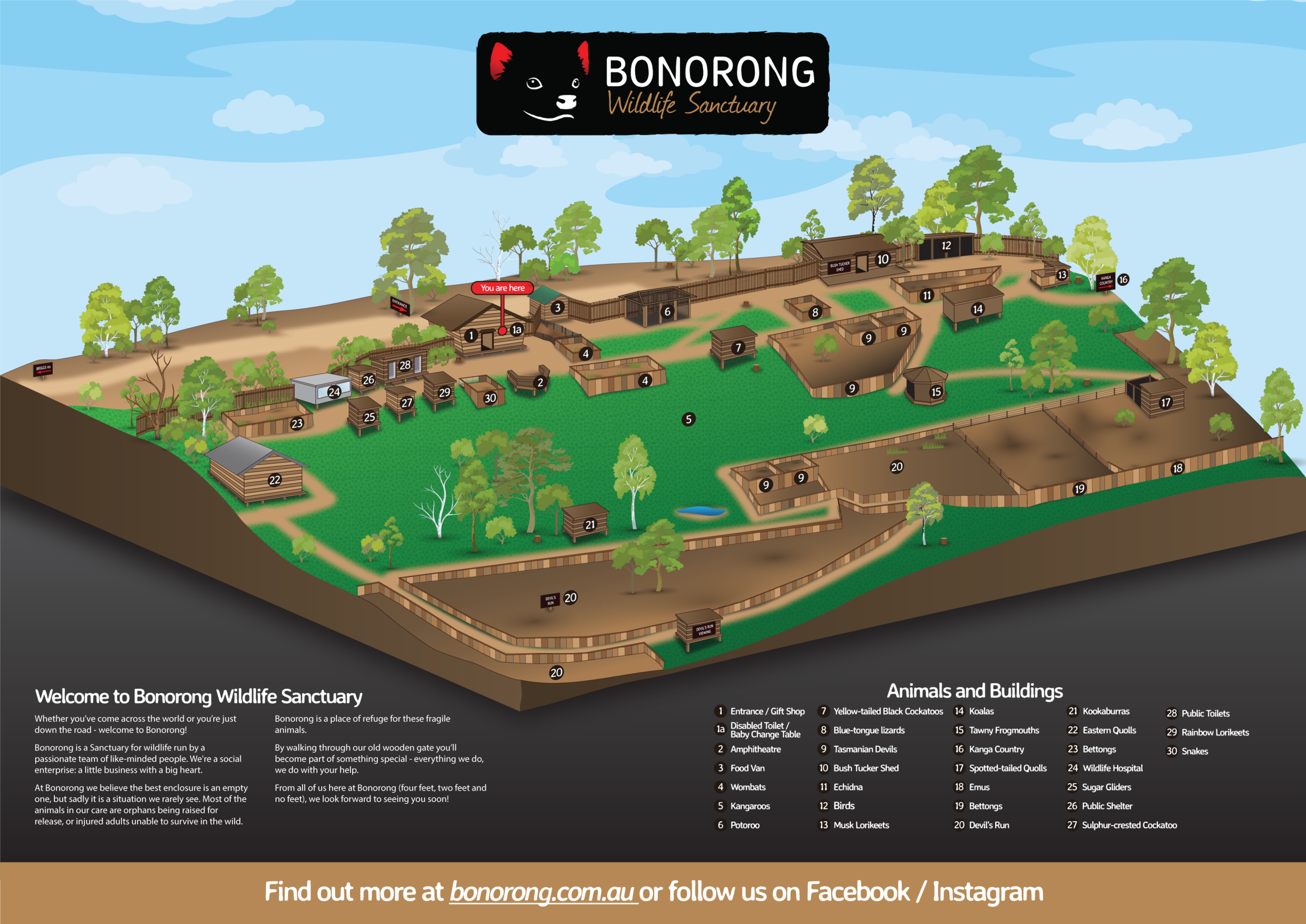 Bonorong Wildlife Sanctuary Map - 29.png