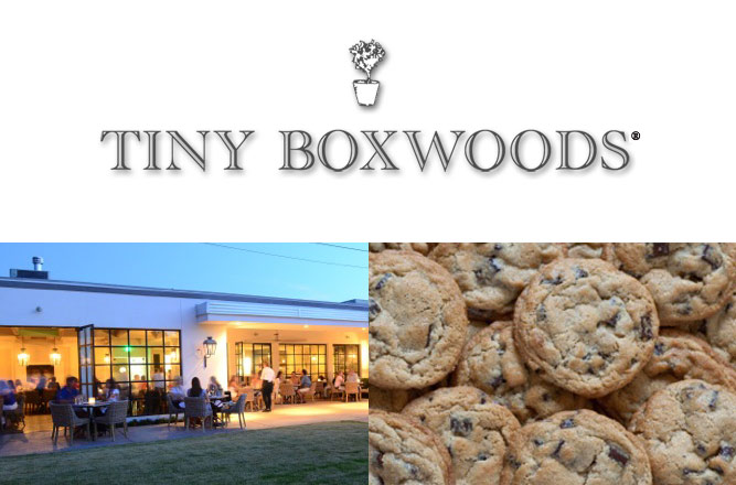 2014 Holiday Gift Guide Tiny Boxwoods Logo, Storefront and Chocolate Chip Cookies