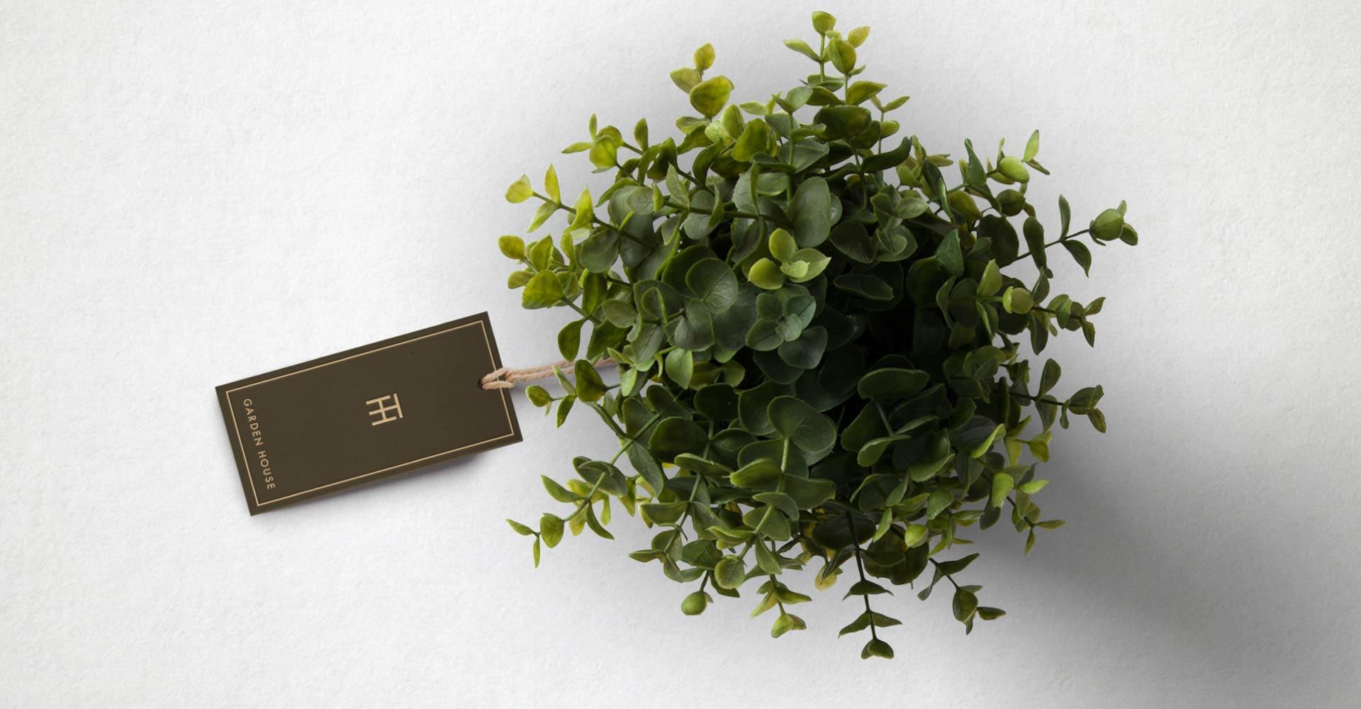 Creative_Retail_Packaging_Thompson_Hanson_Branding_11.jpg