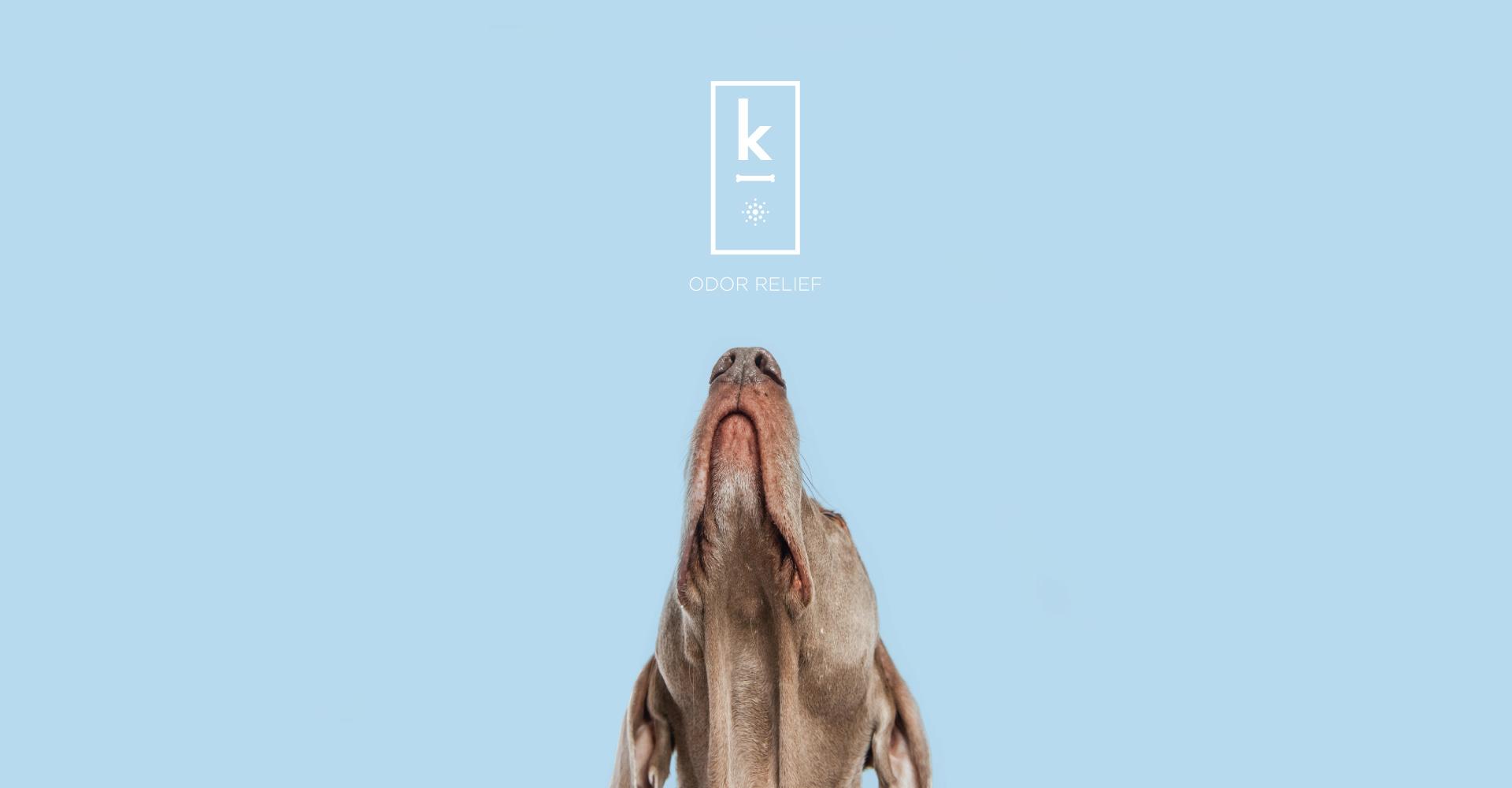 Creative_Retail_Packaging_Branding_Identity_Design_Klementime_10.jpg