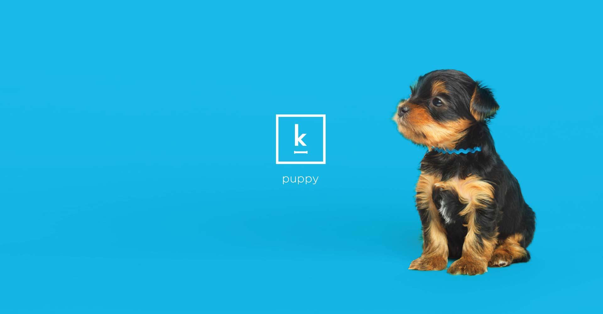 Creative_Retail_Packaging_Branding_Identity_Design_Klementime_16.jpg