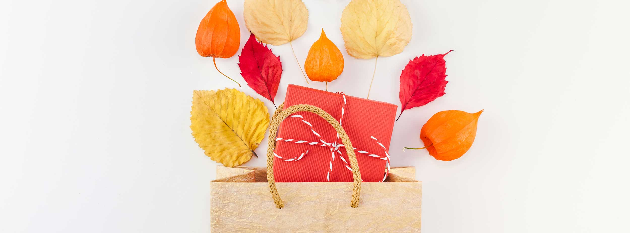 creative-top-view-flat-lay-autumn-composition-shopping-bag-dried-orange-flowers-leaves-background_t20_EnkWrQ.jpg
