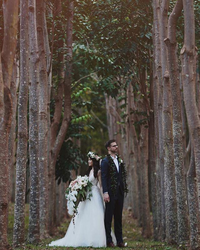 4.19 // Mayra + Mickey 📍: Na 'Aina Kai Botanical Gardens 📝: @modernelopement 📸: @racheljay__ 📹: @redefinedweddings