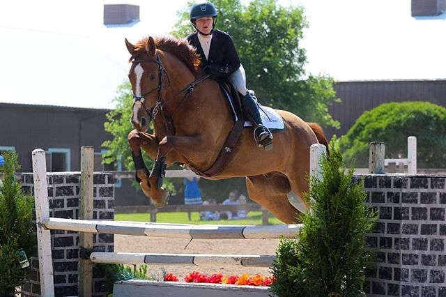 📢📣📣We are EXACTLY ONE WEEK AWAY FROM THE GREATEST HORSE SHOW IN WESTERN NEW YORK. 📣📣📢 Maybe not the greatest but wed like to think so. From crossrails to 3 foot, from hunters to jumpers... we have it all. Our first horse show this year was a blast and we look forword to our next show 📆Saturday July 13th & clinic with Jeremy Greene Sunday july 14th.  Let us know if you will be needing a stall... pre registration is appropriated.  #thederbyatengleside