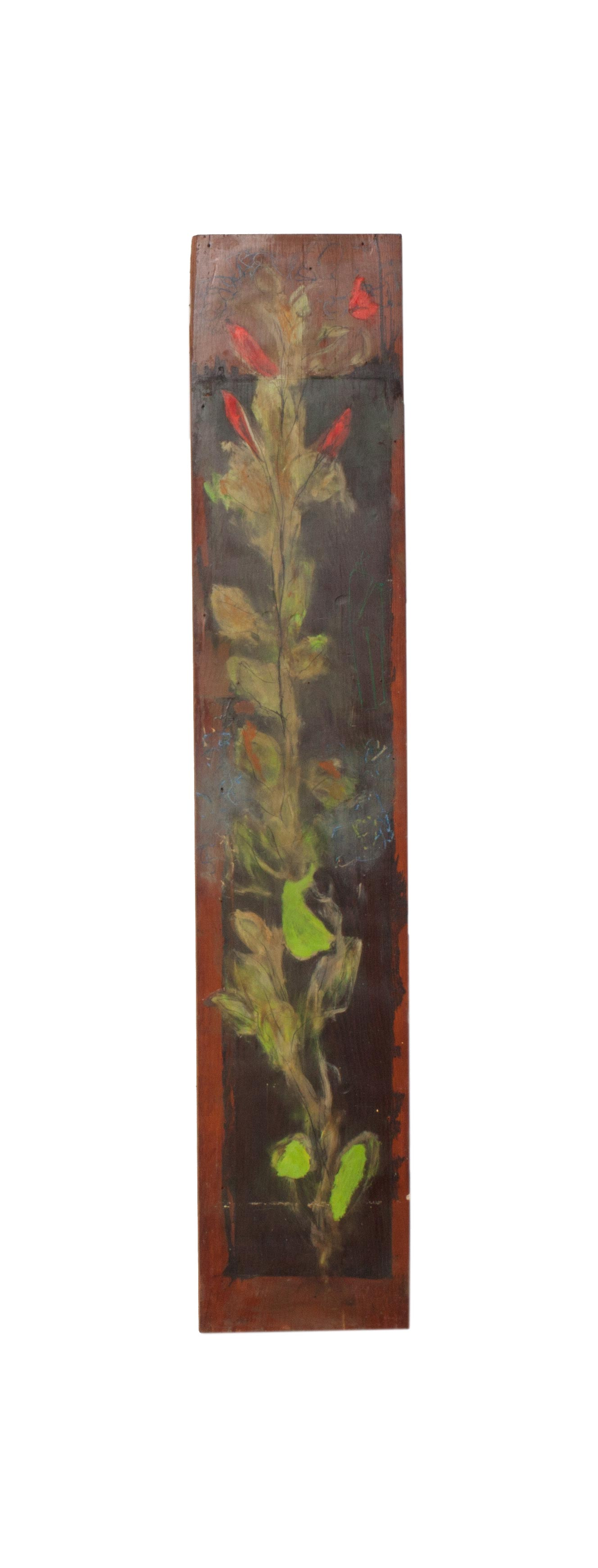 Plank Scape 4