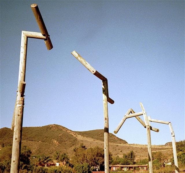 Hawk Poles